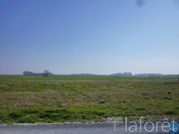 terrain à Noirlieu (51)