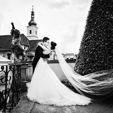 Wedding photographer Tatyana Malysheva (tabby). Photo of 05.11.2017