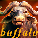 Buffalo Casino Free Slots Game icon