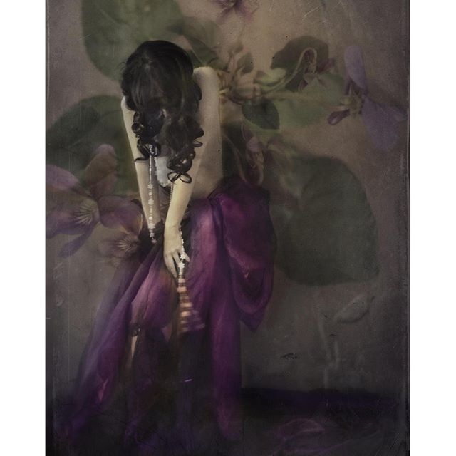 And that queen of secrecy, the Violet: what strange powers hast thou, as a mere shadow! But how great, when in an eye thou art alive with fate! [John Keats] di fairytalesneverdie