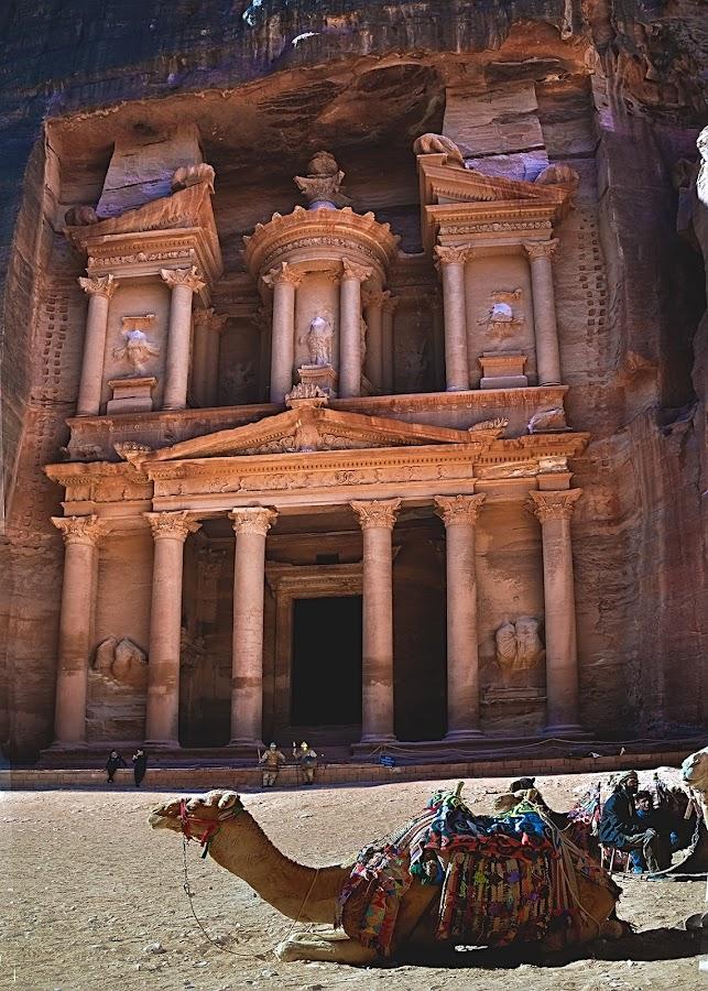 Petra by Mirko Ilić - City,  Street & Park  Historic Districts ( camel, jordan, monastery, historic district, rocks,  )