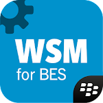 Work Space Manager for BES12 Icon