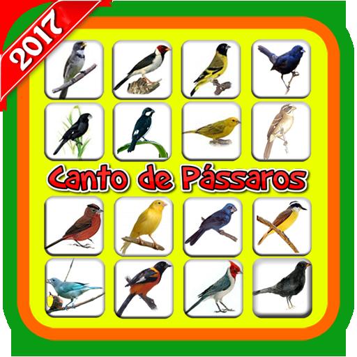 Canto de Pássaros (Offline)