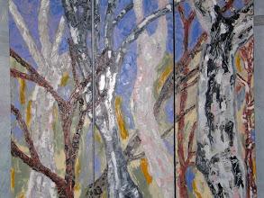Photo: Woollamia Bushwalk Triptych Oil 90cmx90cm $300