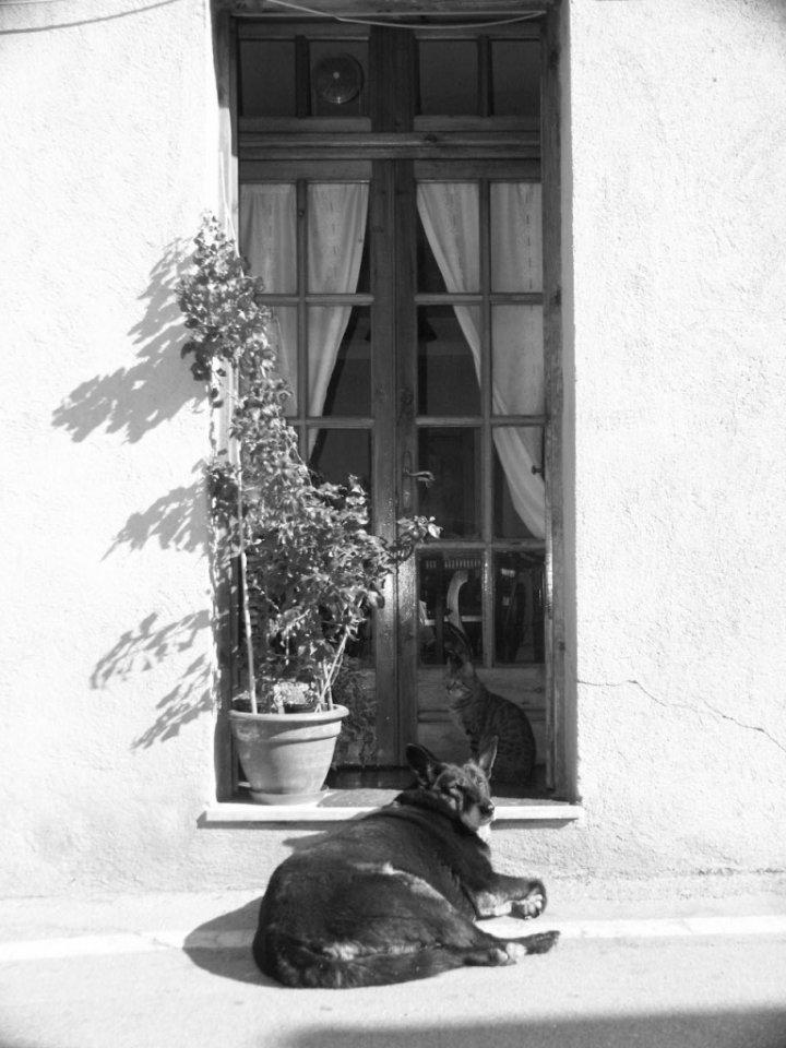 Sleeping under a window di littlelaura80