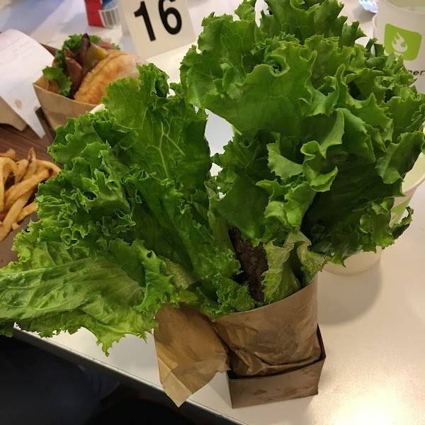 Way too much lettuce to even try and eat