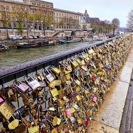 Locks of Paris by Anatoliy Kosterev - City,  Street & Park  Historic Districts ( paris, locks, cityscape, river, city )