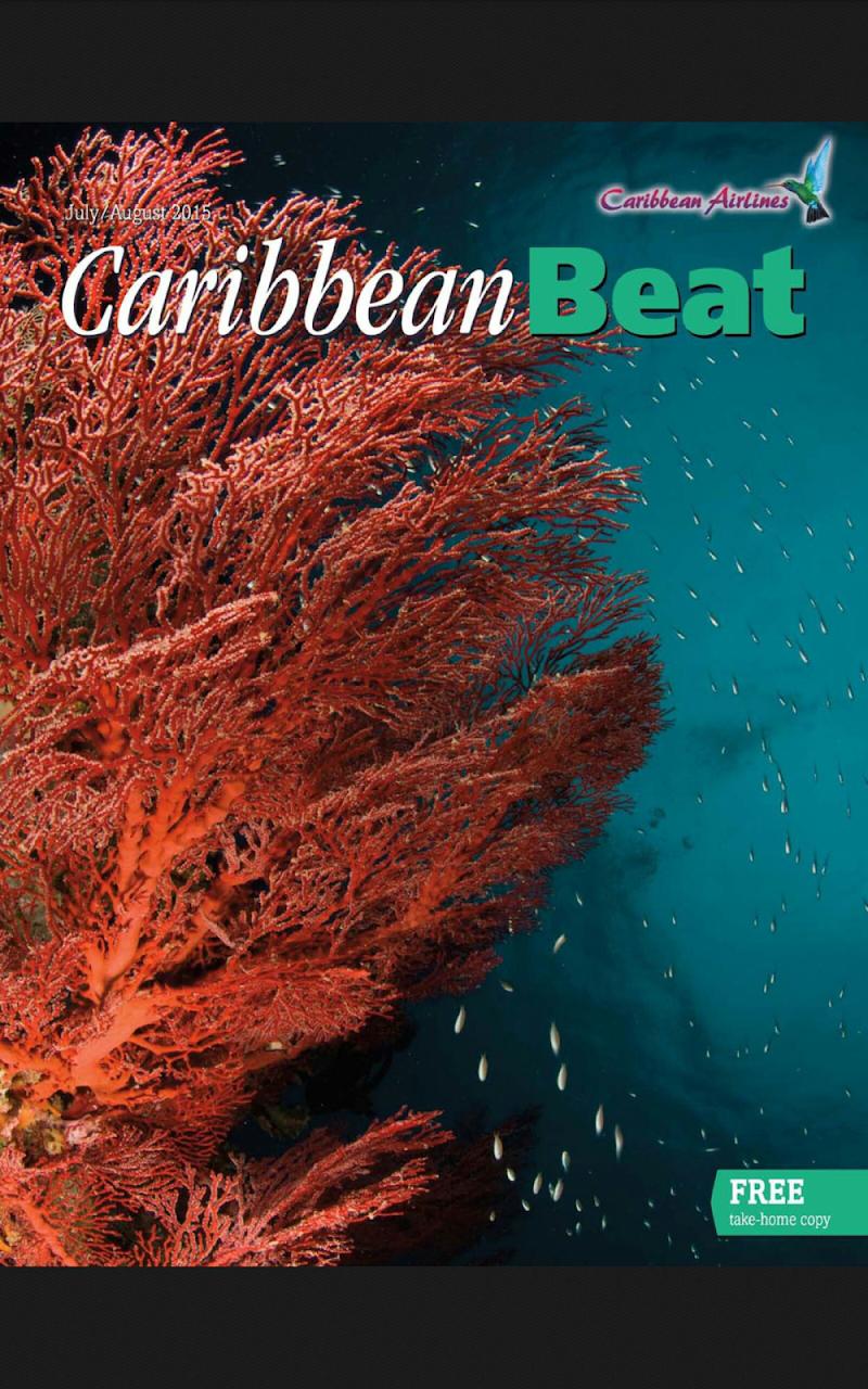 Скриншот Caribbean Beat