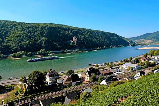 Take in scenic landscapes and historic sites along the Rhine River on Avalon Artistry II.