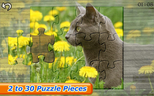Cats Kitten Kids Puzzle Game