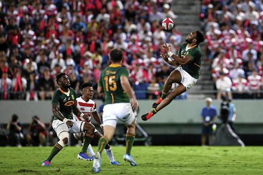 An entire country wants to send the Boks packing