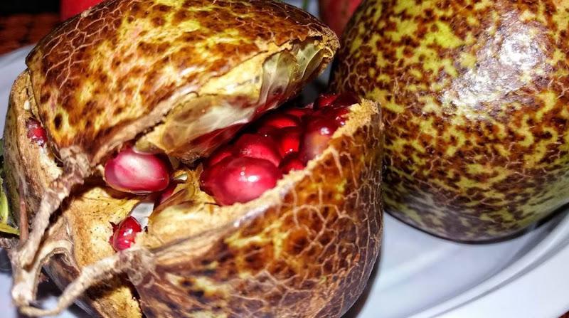 Il frutto dell'amor di Luisanna