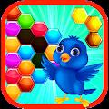 Bird Hexagon Block Puzzle
