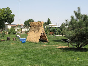 Photo: Tashkent, stork birdhouse near mosque