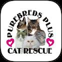 Purebreds Plus Cat Rescue icon