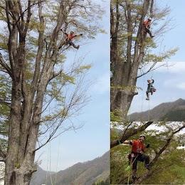猿山-MONKEY MOUNTAIN-