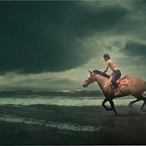 Beach Rider by Al Hilal - People Fine Art ( rider, horse, beach )