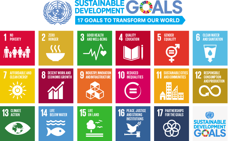 Image result for un goals