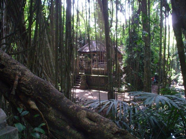 Bali dreams di lahormiga