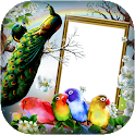Love Birds DP for Insta/FB icon