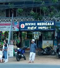 Divine Medicals photo 1