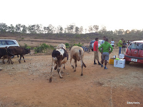 Photo: A few locals decided to come and watch the race..