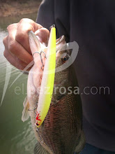 Photo: Black bass de Alange con Sea Shot