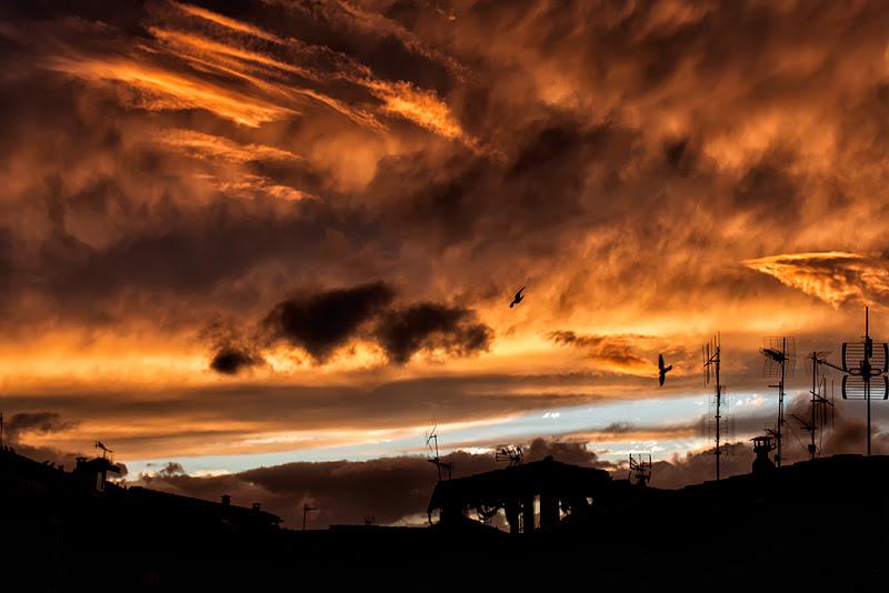 Apocalypse Now di Roberto Di Patrizi