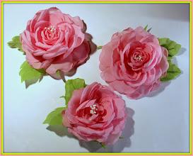Photo: Июньские розы