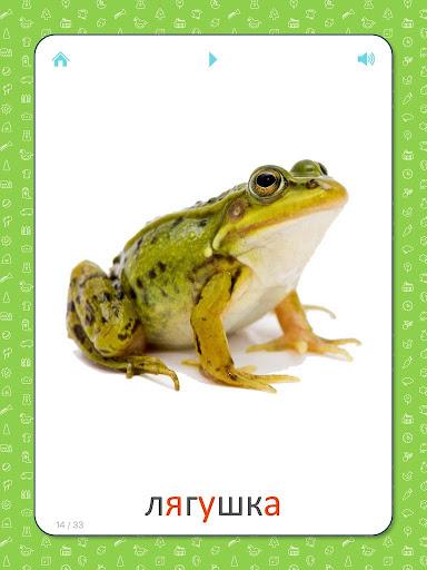 免費下載教育APP|Звуки животных для малышей app開箱文|APP開箱王