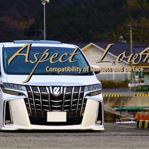 アルファード AGH30W S-Cパッケージのカスタム事例画像 フラ<Aspect Lowness>さんの2019年04月06日12:49の投稿