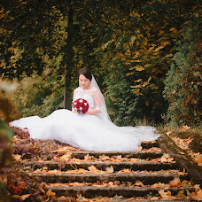 Wedding photographer Nikolay Vydra (NikolaV). Photo of 19.01.2017