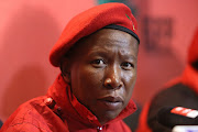The writer states that Malema's remarks about Indian citizens were reckless.