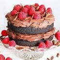 Vegan cakes recipes icon