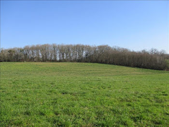 terrain à Loubieng (64)