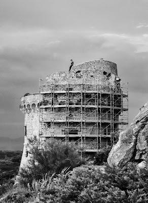 Solo sulla torre di Razor1979