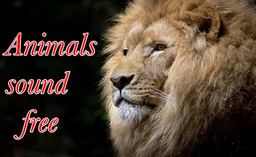 Animal Ringtone free 2017 for PC