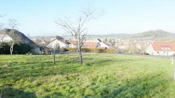 terrain à Tarcenay (25)