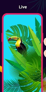 HD flashcall, 3d wallpapers, themes 4k apk download 4