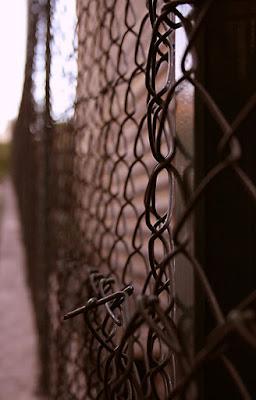 A fence di francyb85