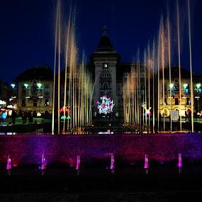 by Gigi Furtuna - City,  Street & Park  Fountains