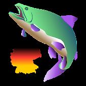 Mybigcatch