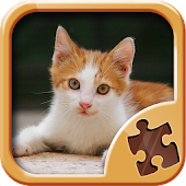 Kitty Puzzle Games