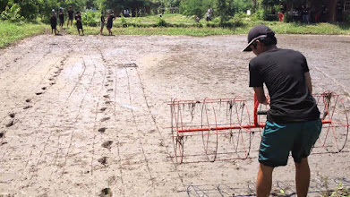 Photo: Demonstration of Roller marker on SRI ricefield in Thailand [Photo by Supachai Pitiwut, 2013]