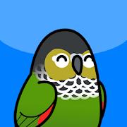 Too Many Birds!™