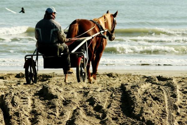 Cavalcare al sabbia di tommy84