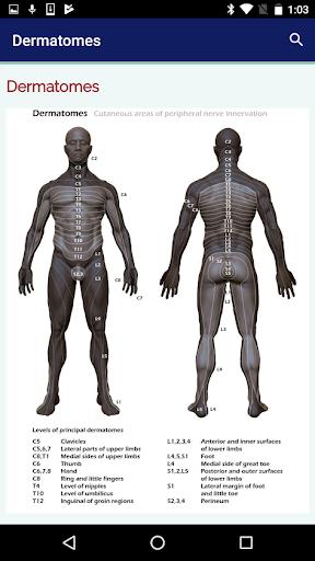 Neurosurgery Survival Guide screenshot