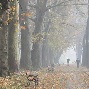 by Emil Chuchkov - Landscapes Weather