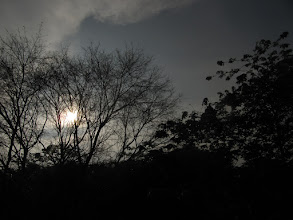 Photo: cloudy morning shot from my balcony.