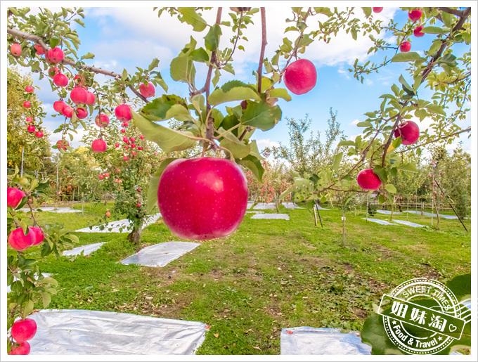 日本東北仙台五日遊採水果體驗